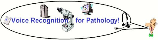 Voice Recognition for Pathologists